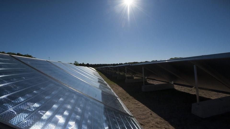 Kommunens udvalg for teknik og miljø har netop sagt ja til, at der kan planlægges solcenteranlæg i Bedsted og i Hundborg. Arkivfoto: Kim Dahl Hansen