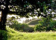 Friluftsrådet har udnævnt Dansk Naturpark i Tolne
