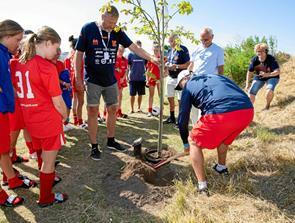 Traditionen tro blev der plantet træ ved Cup No. 1