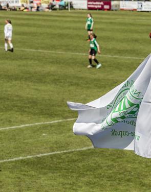 Nørhalne Cup sætter ny rekord