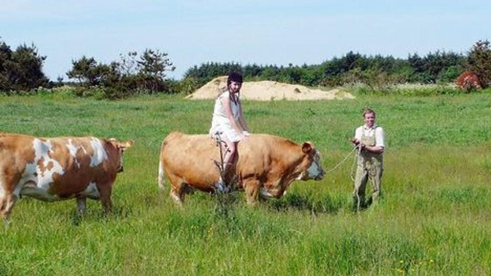 Der er lidt wild west over det, når Family Farm Fun Park holder polterabend - som her, hvor den vordende brud Mette Kristensen rider på en ko.Privatfoto