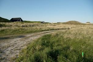 Lokalplan for Klitmøller får kritik: Vil inddrage til Planklagenævnet