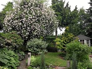 Haveforedrag om roser i Dania