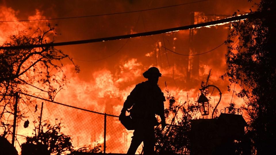 Klimaforandringer påvirker naturen over hele USA og vil medføre flere katastrofer som de voldsomme skovbrande, der i de seneste uger har plaget Californien. (Arkivfoto)