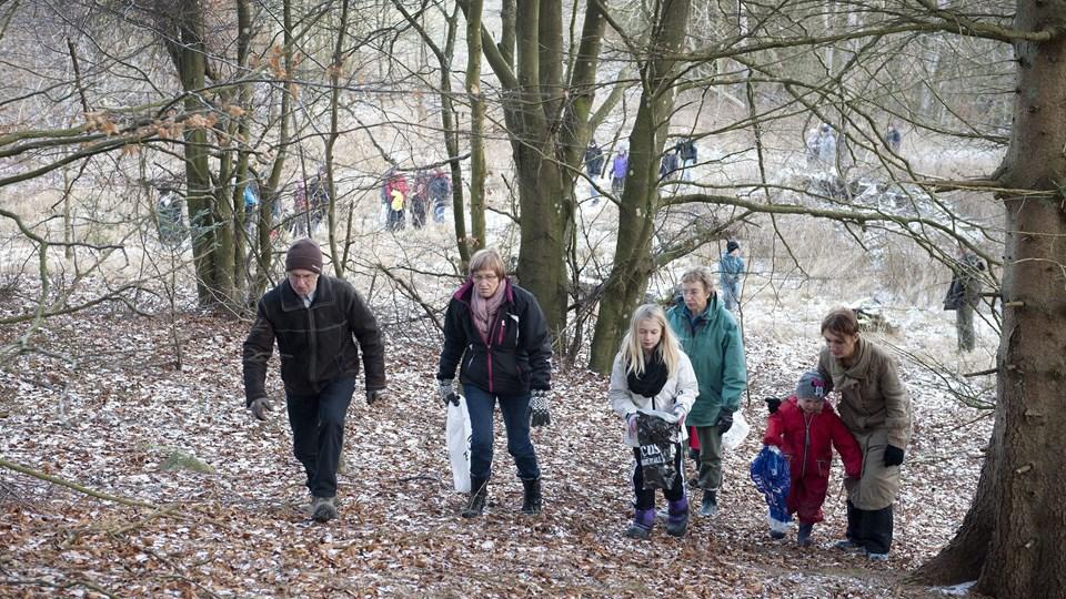 Pajhede Skov er i dag et meget ?benyttet rekreativt område. ?Arkivfoto: Bente Poder