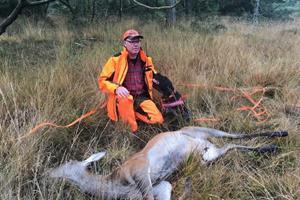 Christian og Kajsa opsporer dyr, der er påkørt: Sådan skal du reagere, hvis uheldet er ude