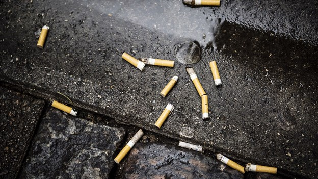 Børn og unge fjerner cigaretskod fra naturen hele ugen
