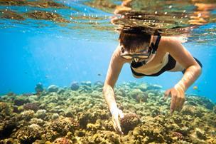 Millioner til naturoplevelser i Himmerland: Her kan du snart snorkle på kunstigt rev