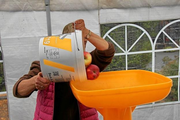 Der var nok at se til i teltet hvor æblerne skulle kværnes før presningen. Kværnen var ikke i ro. Foto: Hans B. Henriksen