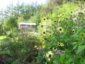 Udflugt til åbne haver i Saltum