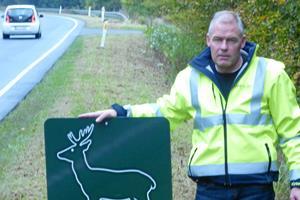Hjortevildt skal sikres bedre i trafikken