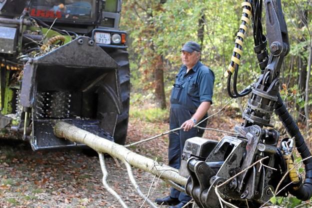 Maskinfører Jens Henrik Christensen har travlt med flishuggeren nær Tvebjerg ved Aars. Foto: Martin Glerup