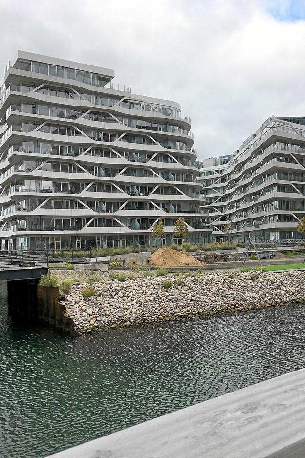 Turen gik også til Aarhus Havn, hvor der er godt gang i nybyggeriet. Foto: Privat