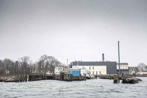 75 udlændinge lever på tålt ophold i Danmark