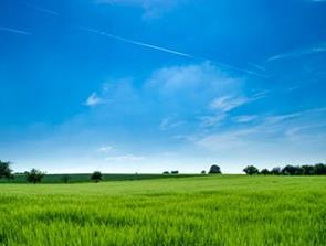 Har du store udendørs arealer som kræver vedligeholdelse?