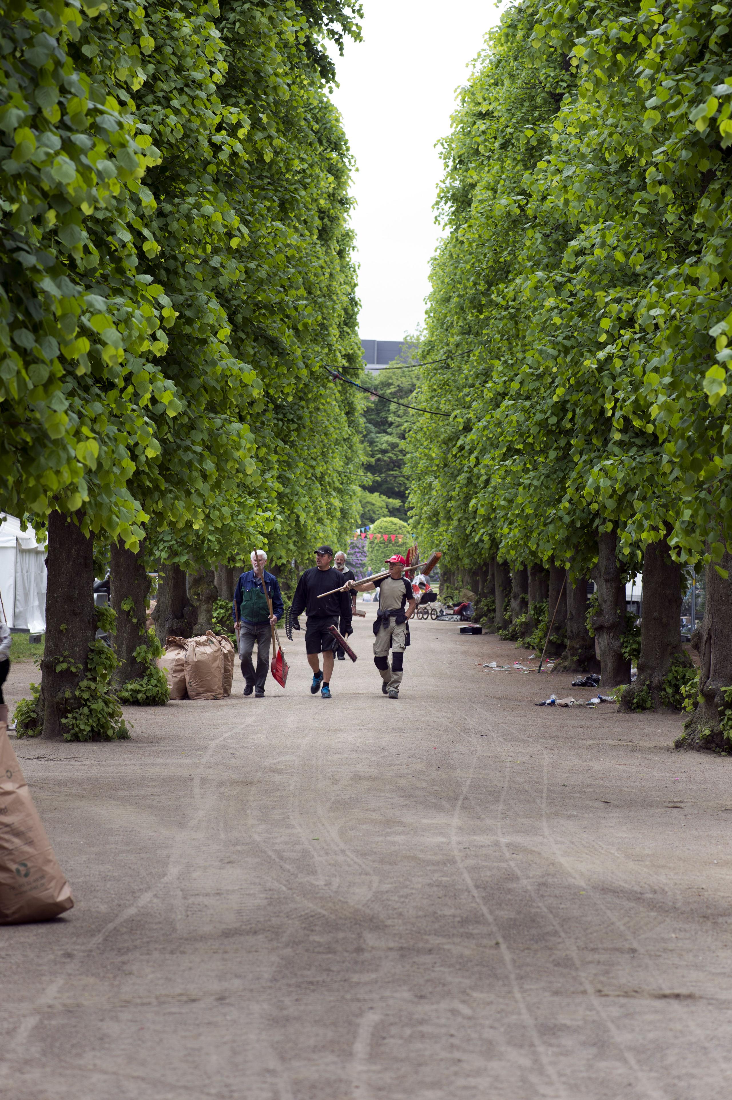 Aalborg opgiver fredning af Kilde-parken: - Men hvad så med de gamle træer?