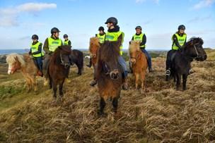 Ikke mere ferie til hestene: Sommerlandets islændere skal på vinterture