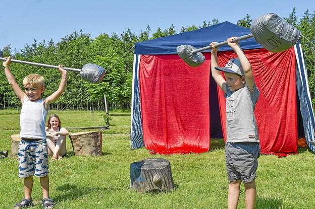 Tunge udfoldelser i den varme sol af de stærke mænd Marius og Adam.Foto: Ole Iversen