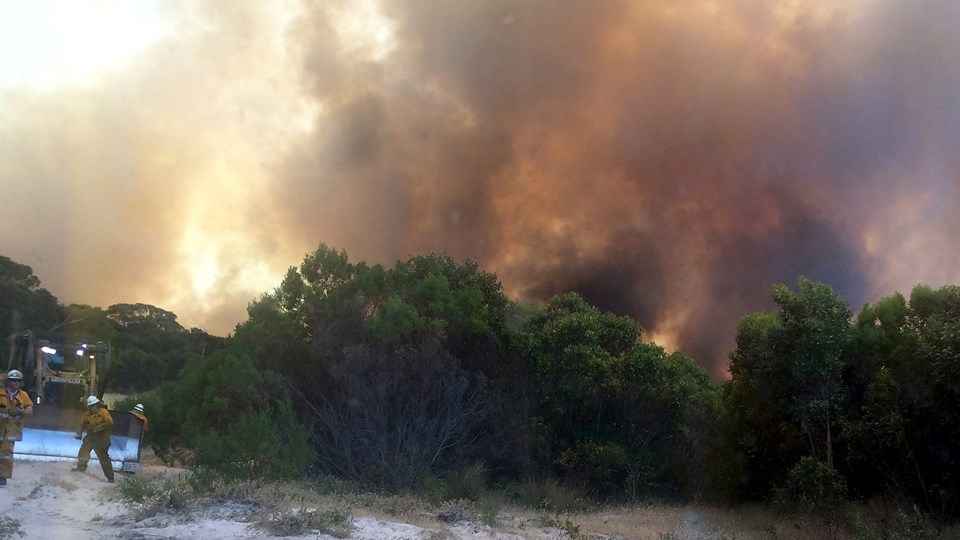 Skovbrande forekommer ofte i Australiens varme og tørre somre. Foto: Reuters/Stringer/arkiv