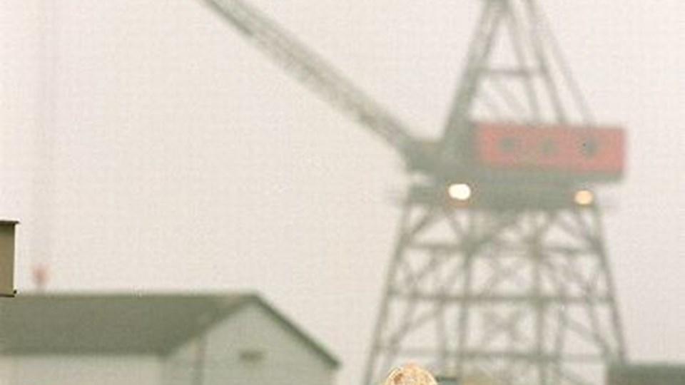 Lindø-arbejderne finder det rimeligt med belønninger.FOTO: scanpix