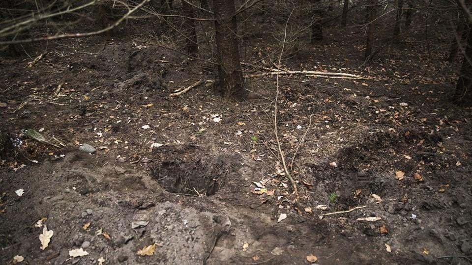 Billede er taget i det område, hvor politiet har gravet.