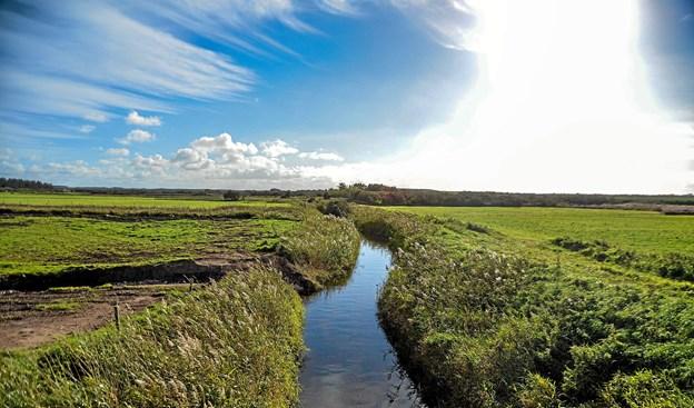 Projektet, som hænger sammen med Dybvad å. som går gennem landskabet. Foto: Mogens Lynge