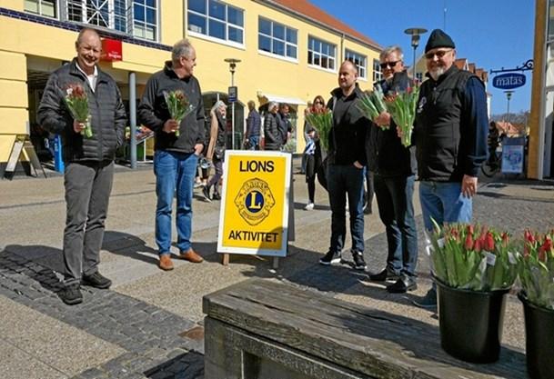 Lions sætter fokus på misbrug veda t sælge tulipaner