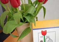 Køb tulipaner og støt Lions - Mod misbrug