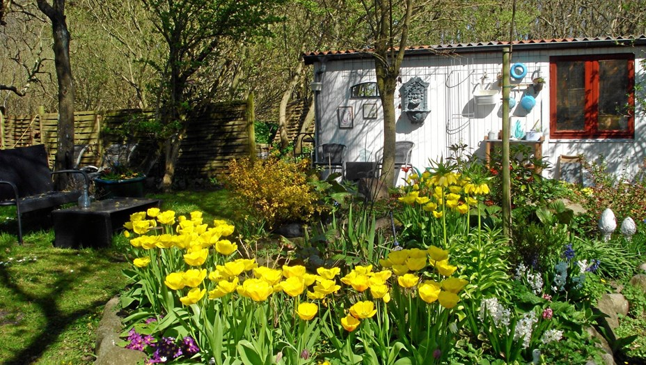Åben have i Klim