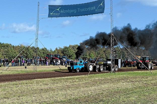 Mosbjerg Traktortræk var som sædvanligt velbesøgt både med deltagende traktorer og tilskuere. Foto: Niels Helver