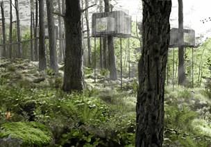 Sov sødt i Als Oddes trækroner: eksklusiv hytte i fuglehøjde åbner til sommer