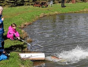 Fiskepark i Bindslev med bid i