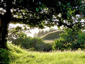 Friluftsrådet udnævner naturpark i Tolne