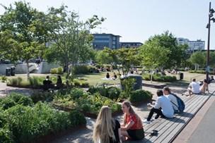Nordjyske direktører: Sådan sælger vi allerede Aalborg til verden