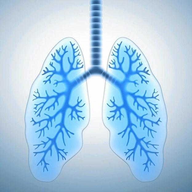 Den internationale lungedag markeres i Jammerbugt.Pressefoto