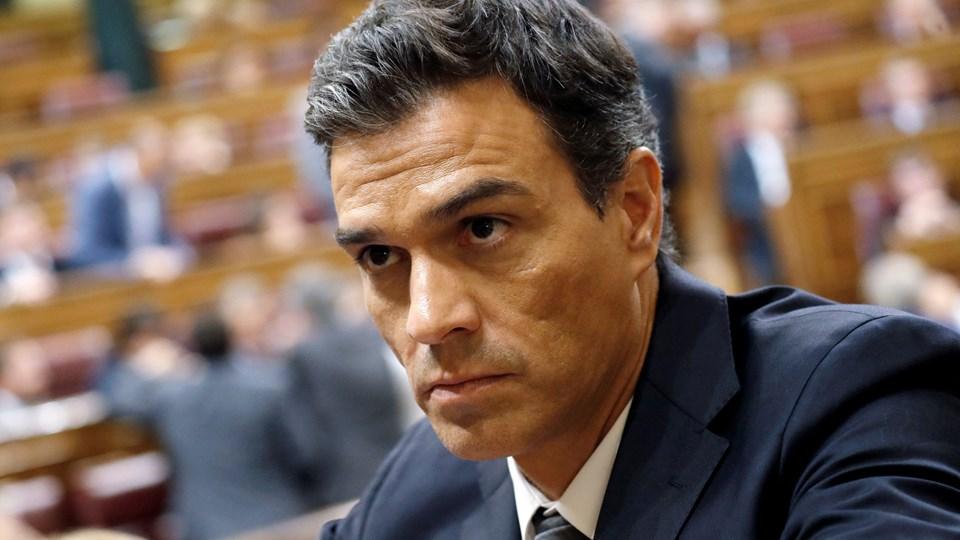 Pedro Foto: Reuters/© Juan Medina / Reuters