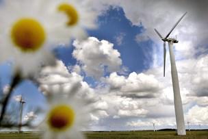 Grønt lys for Danmarks største møllepark