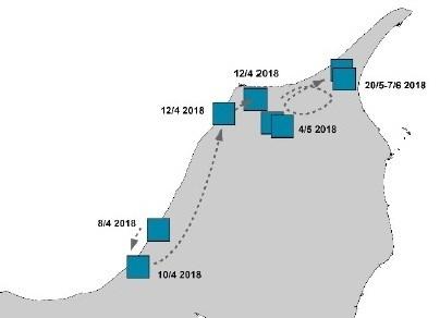 Her har den enlige nordjyske ulv bevæget sig rundt i Nordjylland i andet kvartal i år, ifølge rapporten fra forskerne. Grafik: Nationalt Center for Miljø og Energi