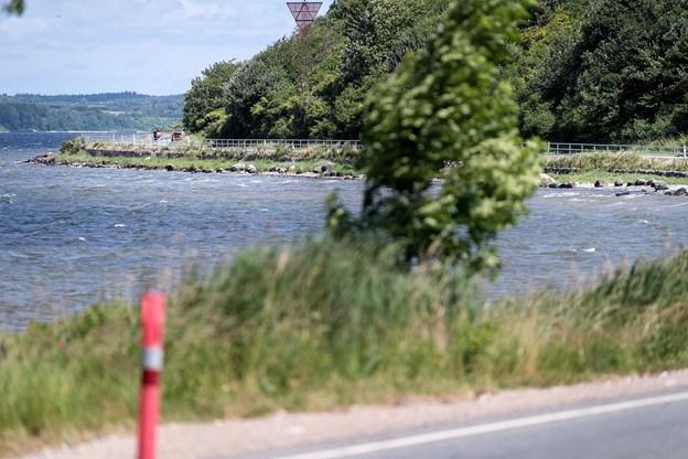 Flere steder langs fjorden mellem Mariager og Fladbjerg er skrænten stejl, ligesom der ligger store sten i vandkanten. Derfor er rækværket nødvendigt, mener Jørgen Hammer Sørensen (DF).Foto: Torben Hansen