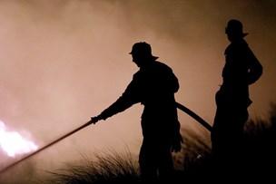 Kreaturer reddet ud af brændende lade
