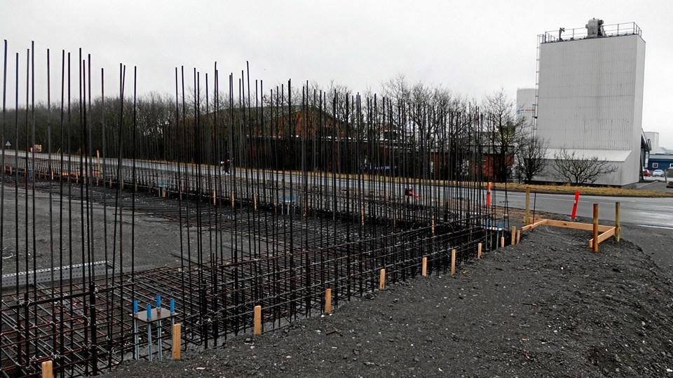 Lagerhallen ligger over for Vilsund Blues afdeling i Foodparken, og der skal opsættes et lukket transportbånd hen over Præstbrovej.Foto: Carsten Tolbøll