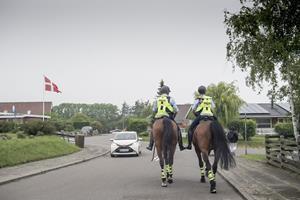 Politiet har svært ved at finde heste til ridende enhed