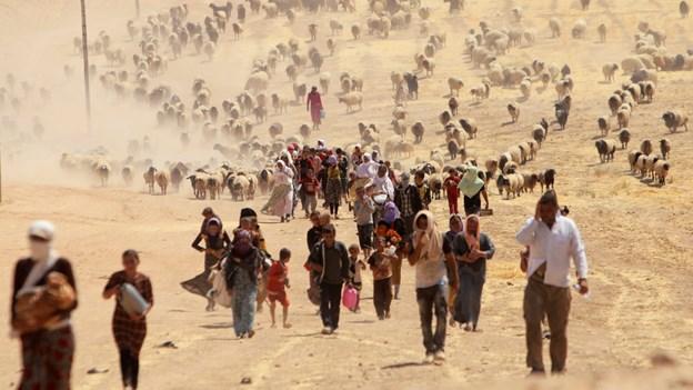 Frygten for nye angreb plager hjemvendte yazidier