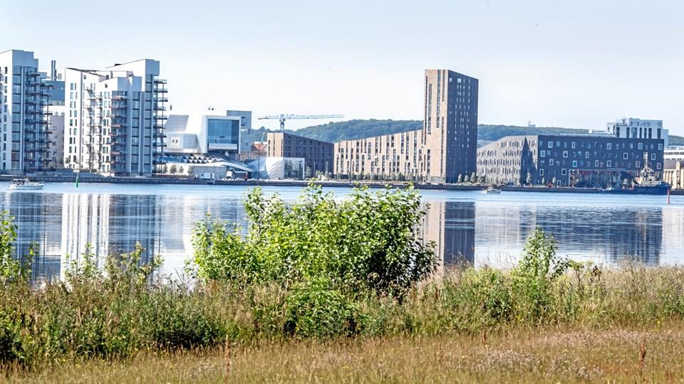 Forundersøgelsen af potentialet ved en ny bro over fjorden varer året ud. Arkivfoto: Andreas Falck