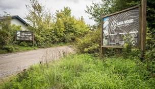 Nordmænd skyder penge i Saga Wood: Nu flytter træproduktionen fra Frejlev