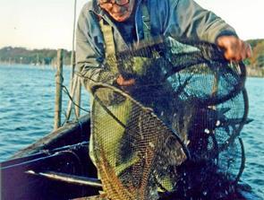 Hyggeligt gensyn med to lune gamle fjordfiskere