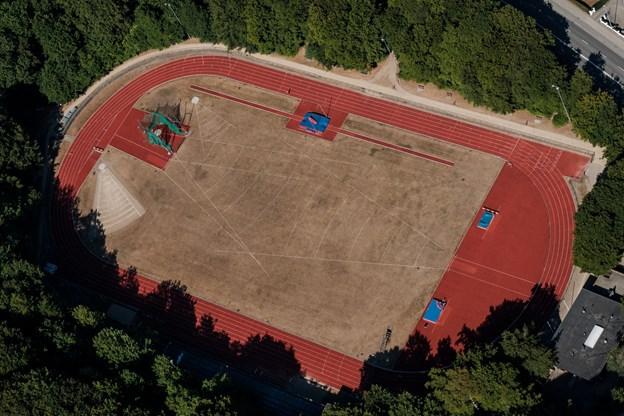 Skovdalen atletikstadion. Her klarer man sig trods det svedne græs, der dog snart får en hjælpende hånd.