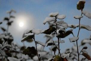 Vinteren kommer: Se hvornår sneen rammer Nordjylland