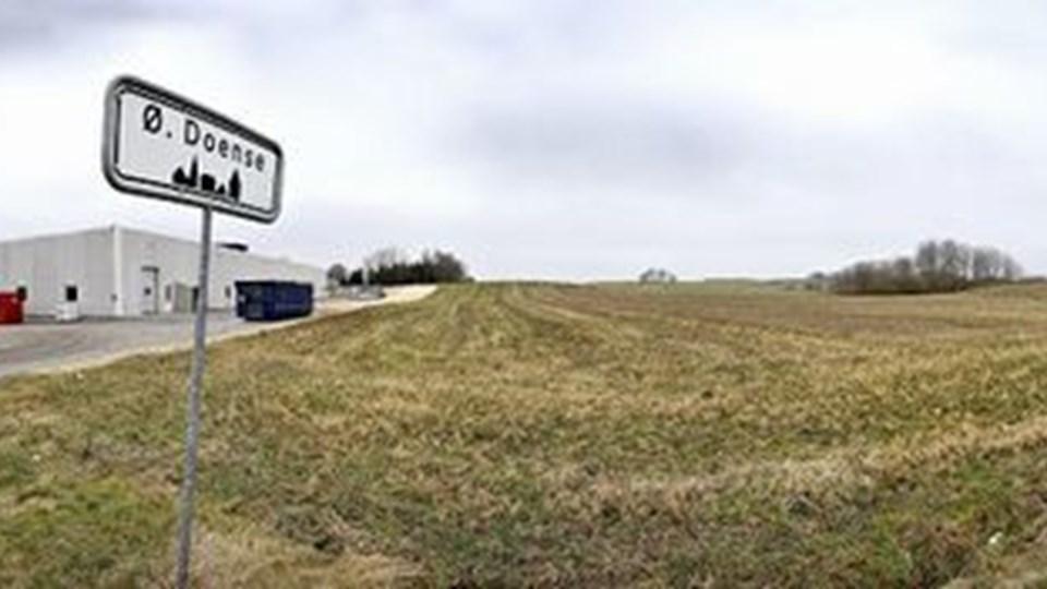 Grænsen mellem land og by i Øster Doense. På marken vil Lantmännen Unibake bygge et stort højlager. Foto: Lars Pauli