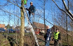 15 fuglekasser oppe at hænge i Baneskoven ved fælles hjælp